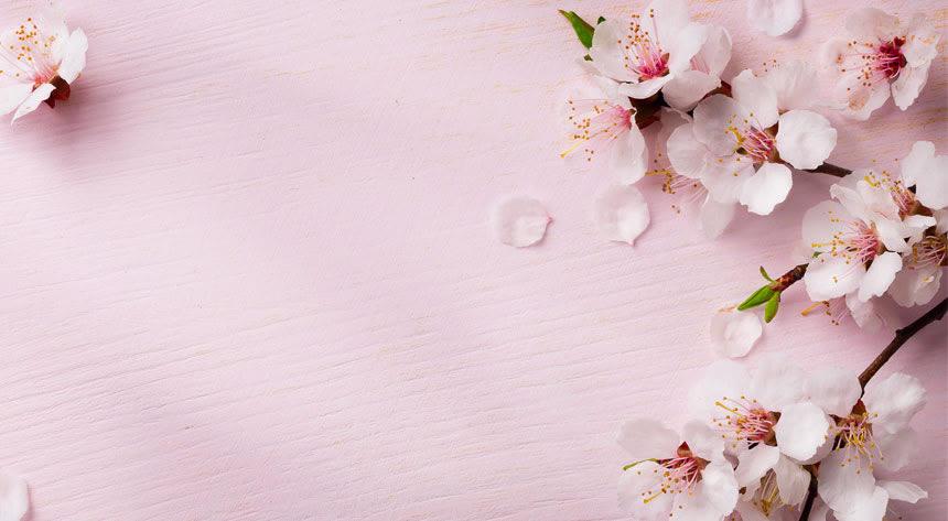 春夏秋冬どれが好き~好きな季節を語り合おう~編