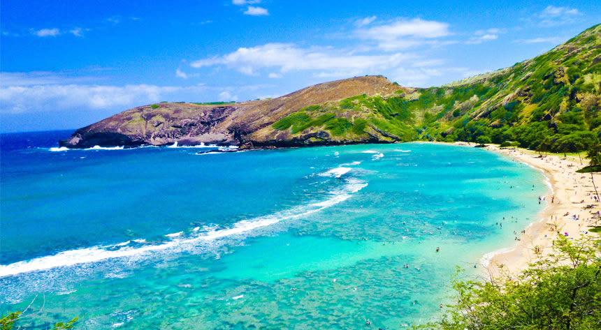 ハワイ好きが集まるお見合いパーティー